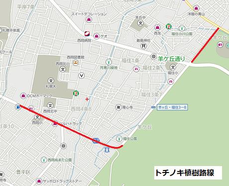 トチノキ植樹路線.png
