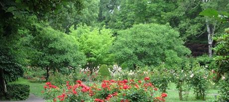 花木園40.jpg